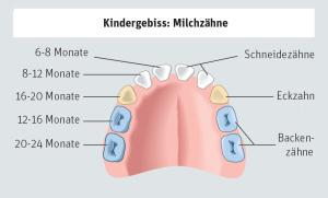 Merkblatt: Zahnfehlstellungen