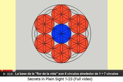 La base de la flor de la vida son 6                         círculos alrededor de 1 = 7 círculos